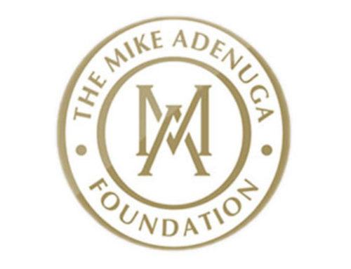 The Mike Adenuga Foundation