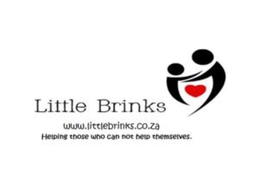 Little Brinks Foundation